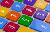 Domain Uzantılarının Anlamı